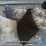 10172776 10202036754826071 7815507175387806553 n 150x150 Tessuti e arredamento. Un cuscino può fare la differenza.