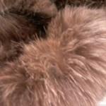10305514 10203403971565635 383614157257280023 n 150x150 Un inverno ECO. Tessuti ecologici battono le pellicce!