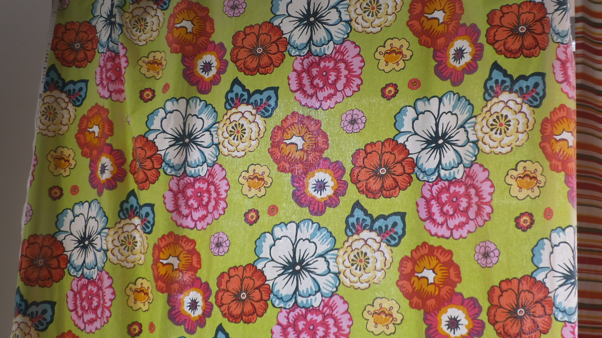 dscf5096 Quel bel giardino estivo: tessuti per esterno.