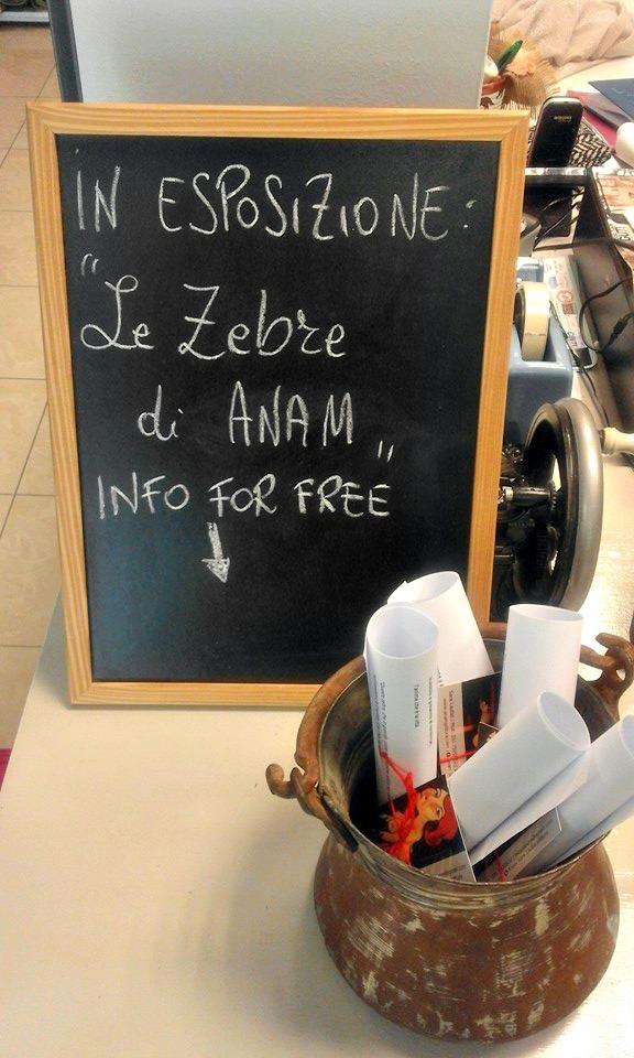 "12645173 10205879716417709 7214161524950645284 n ""Le Zebre di Anam"" in esposizione da Giusti Tessuti"