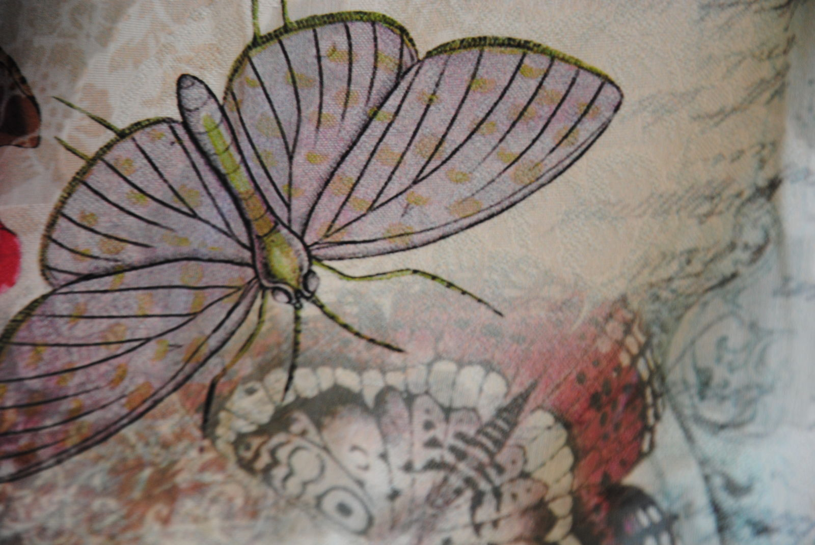 DSC 0812 farfalle & poesia   esaurito