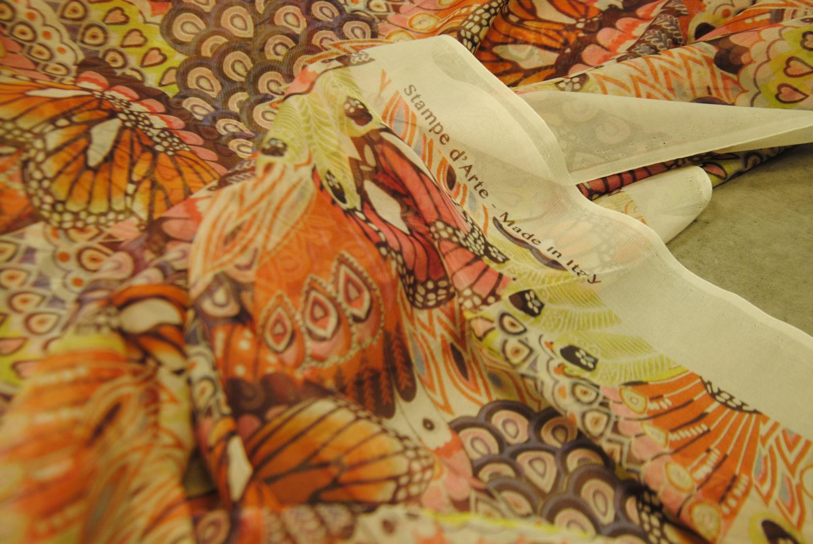DSC 0924 Butterfly & Colors
