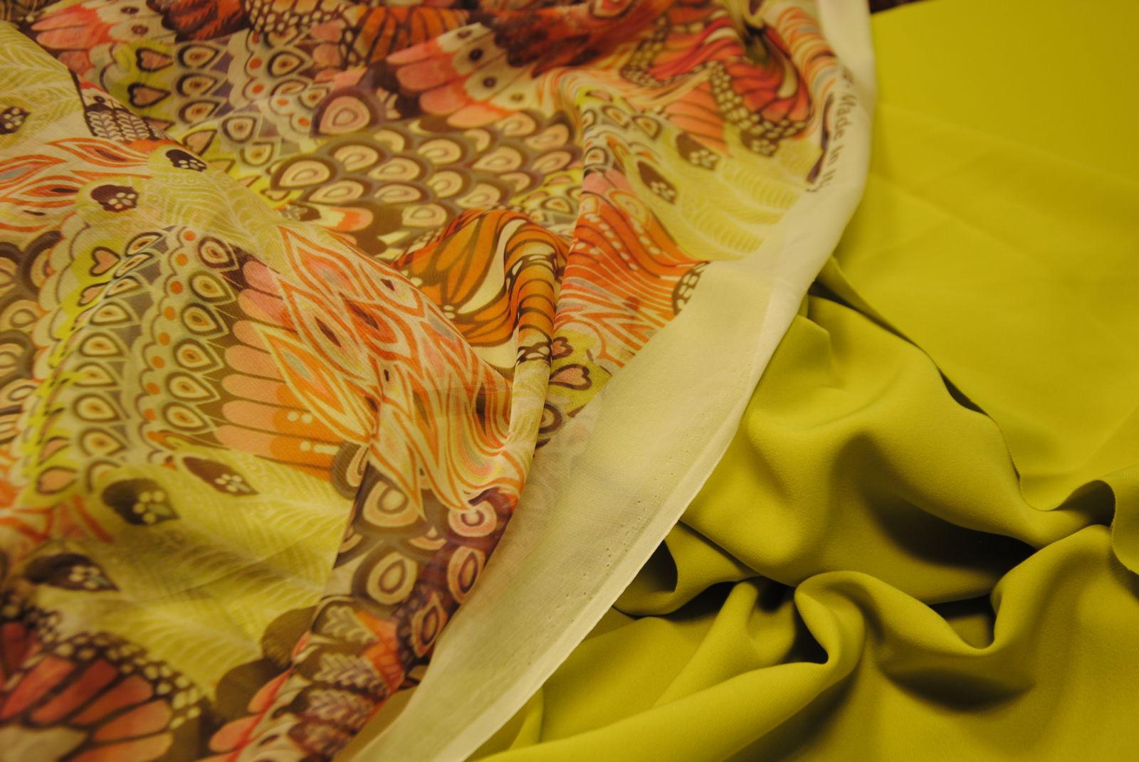 DSC 0925 Butterfly & Colors