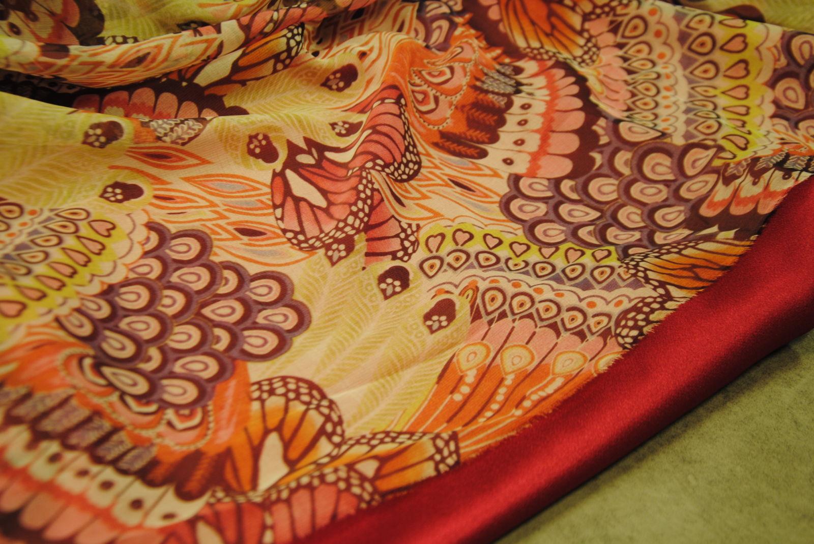 DSC 0927 Butterfly & Colors