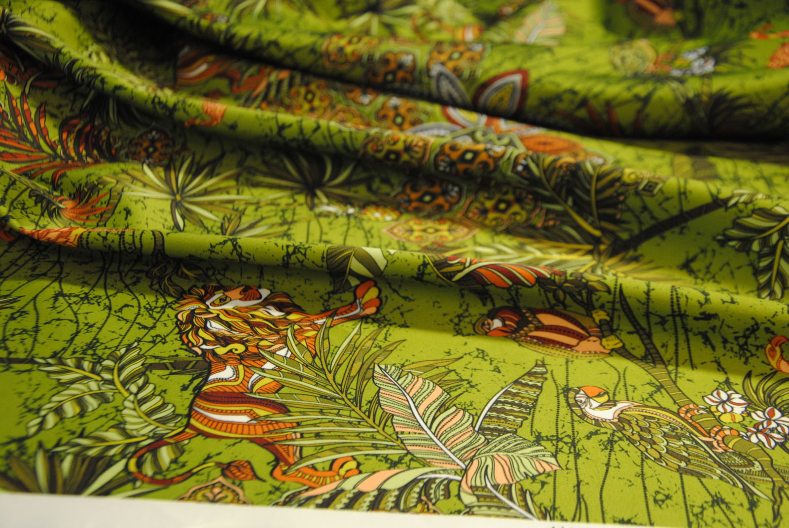 DSC 0985 Duchesse Jungle
