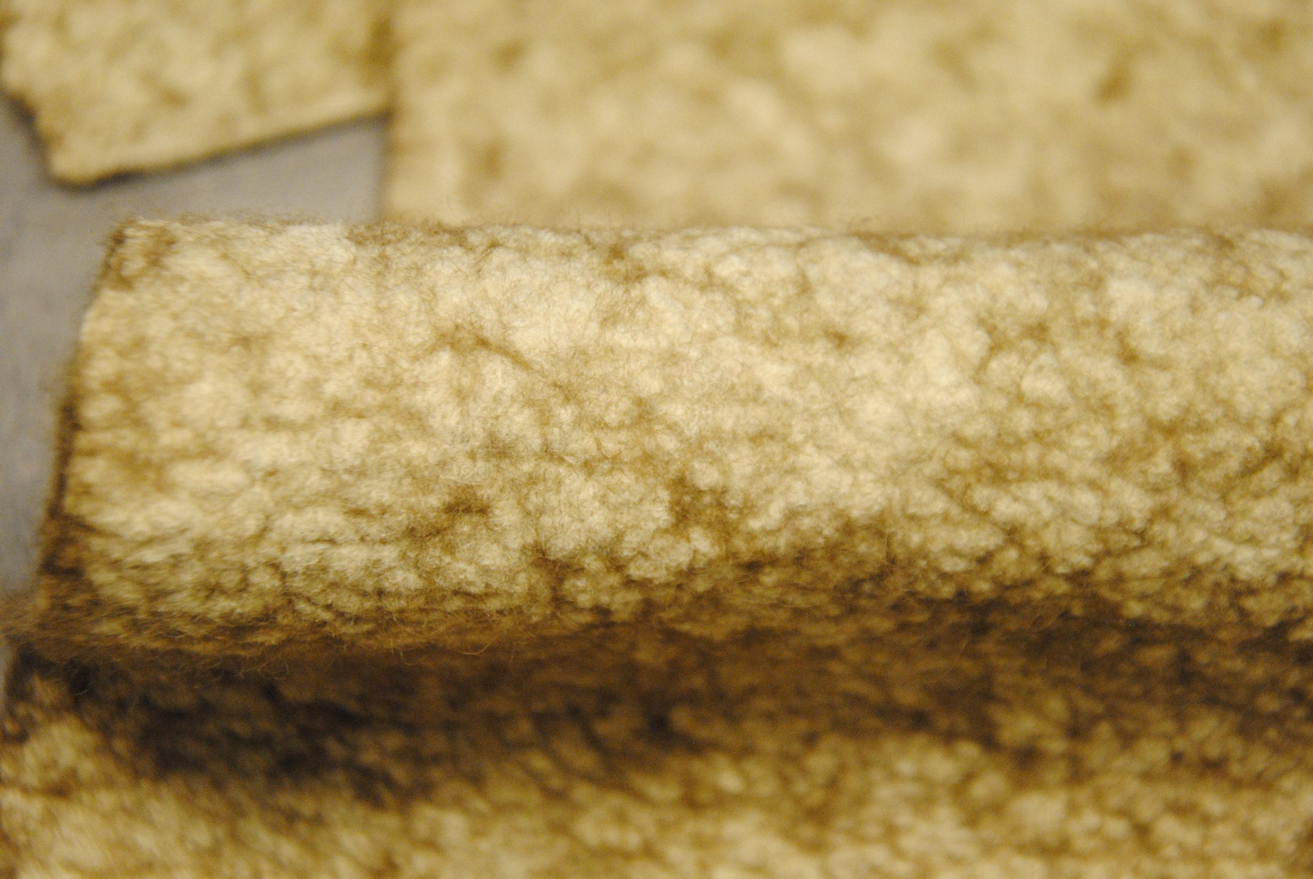 DSC 1268 scaled Feltro lana U.S.A. Sabbia   infeltrito 2MT