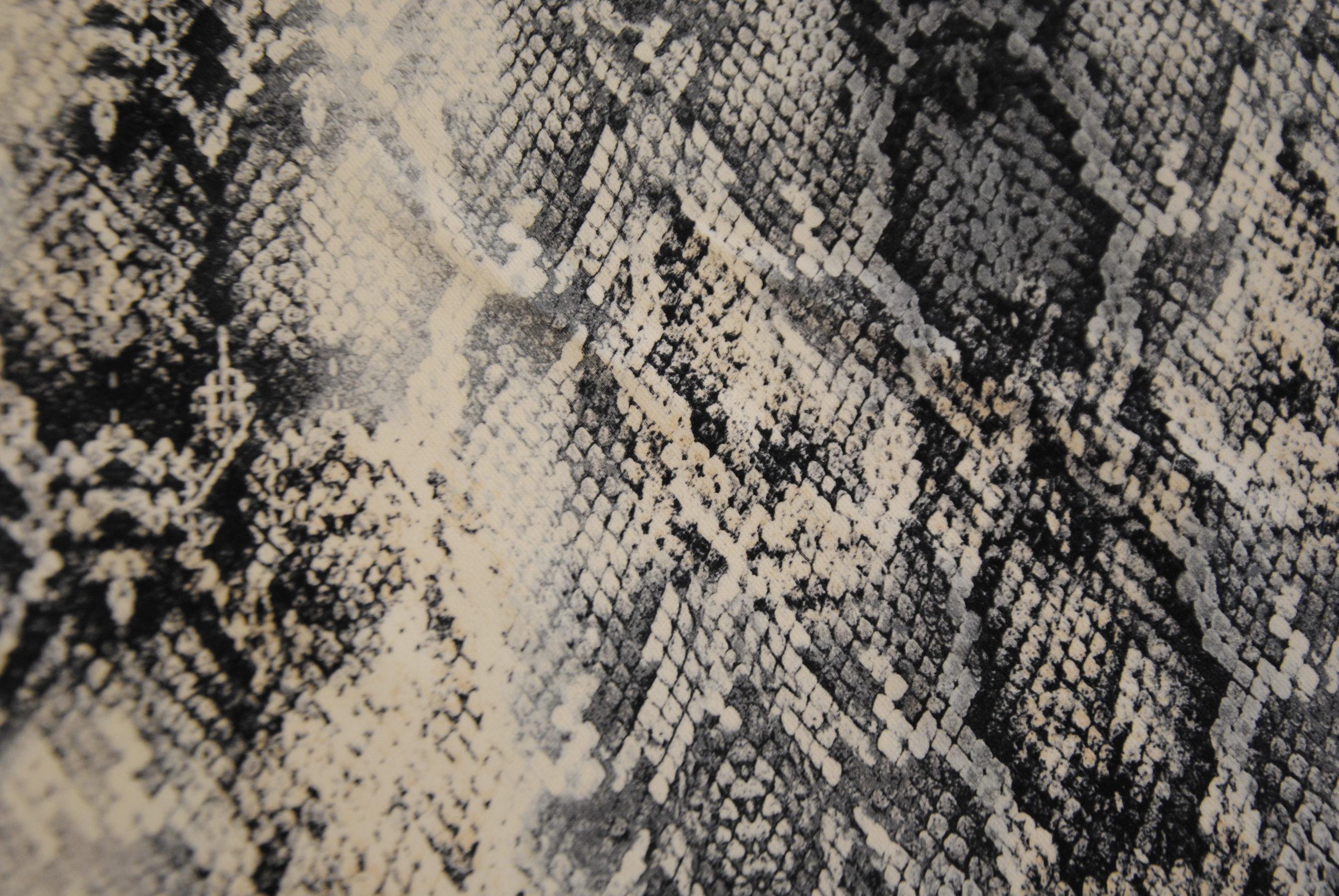 DSC 1325 scaled Insolito PITONE