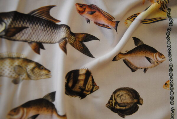 pesci e lino (6)