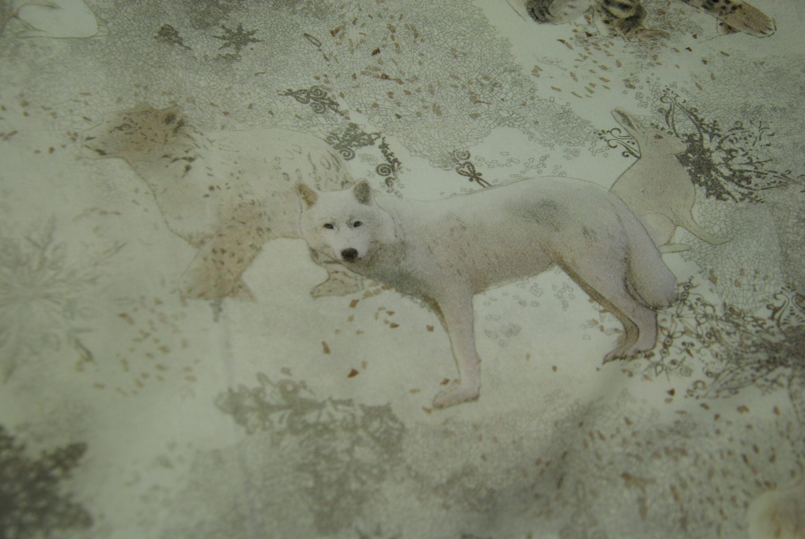 DSC 1369 scaled Polar   Orsi e Lupi DOPPIA ALTEZZA