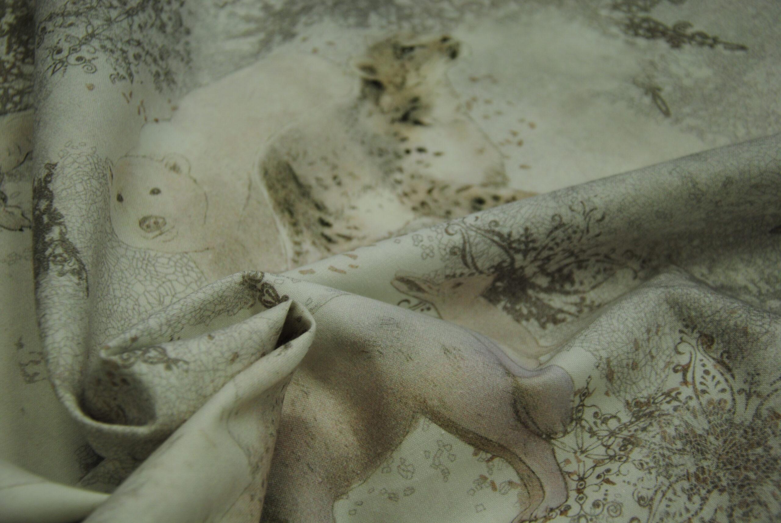 DSC 1370 scaled Polar   Orsi e Lupi DOPPIA ALTEZZA