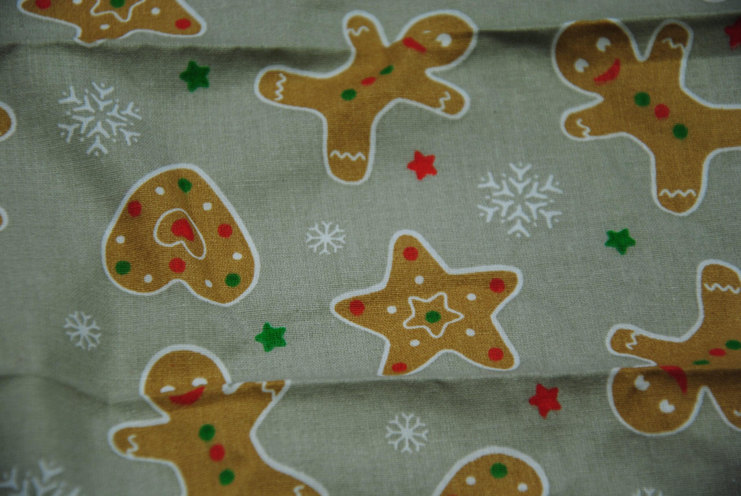 DSC 1395 1 scaled Pasticcino   cotone Natale