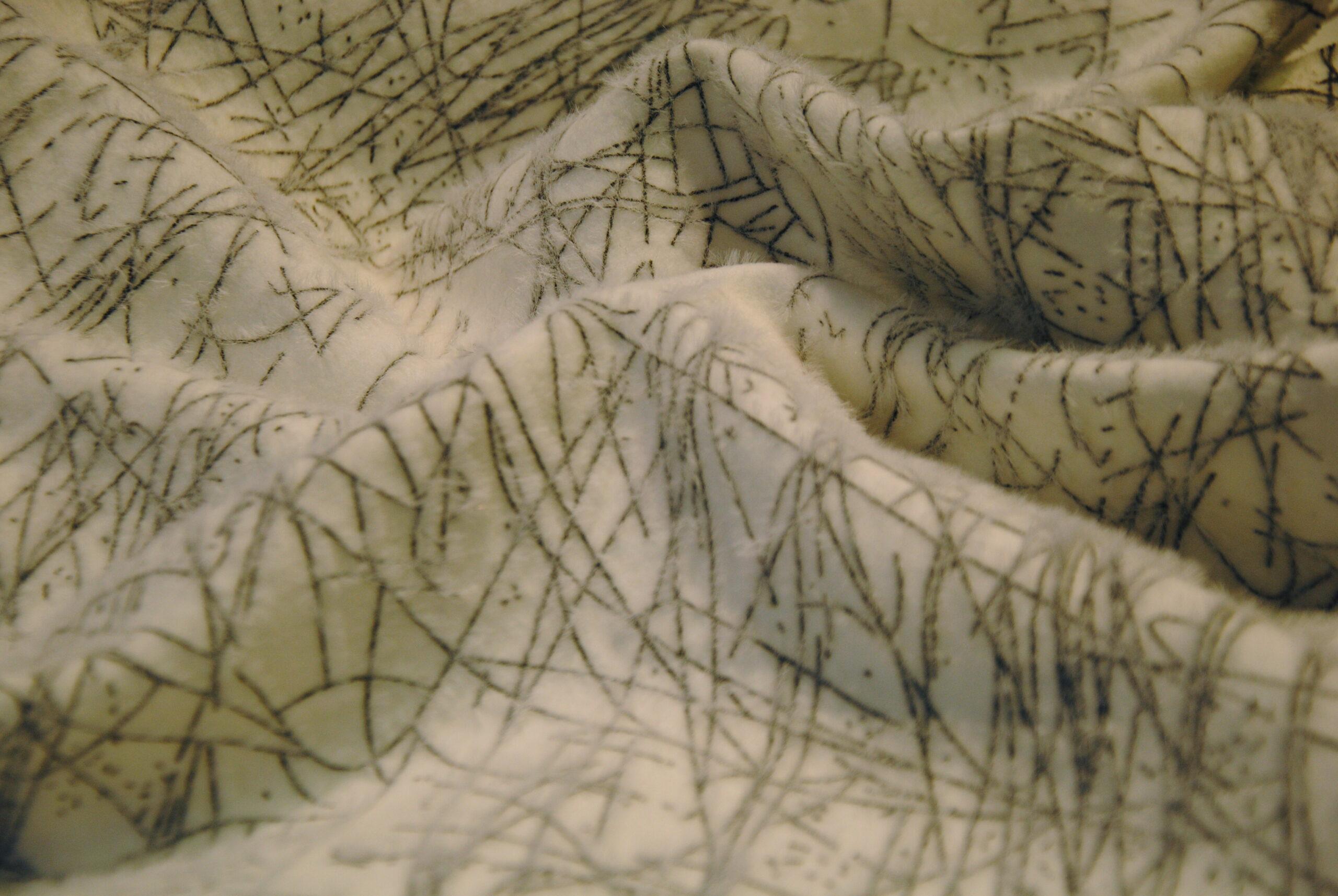 CSC 0026 scaled Re delle Nevi   panno cappotto