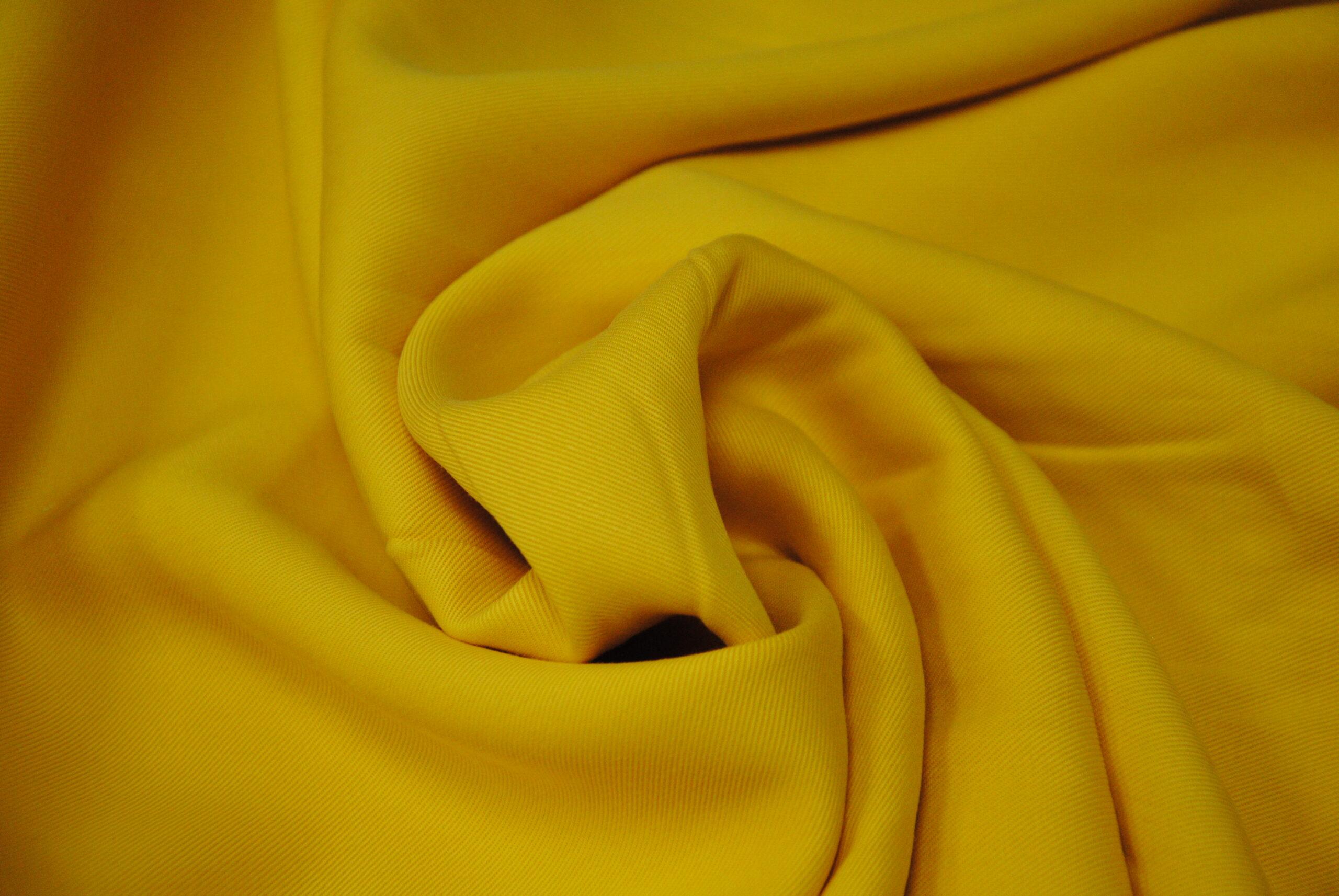 DSC 0028 scaled EUCALIPTO   giallo